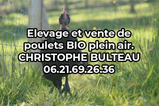 logo_christophe_bulteau