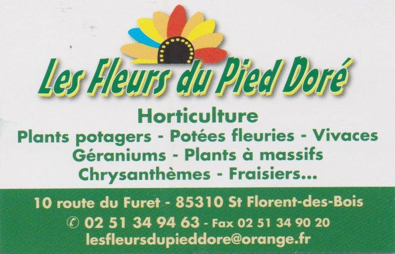 logo_les_fleurs_du_pied_dore